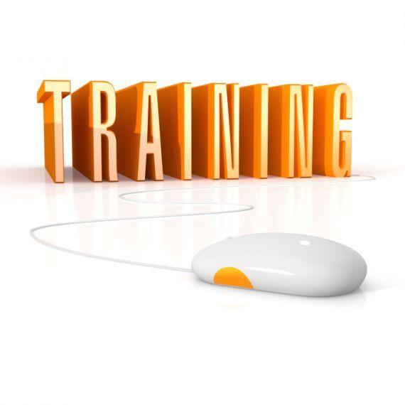 Why Do We Require Training Development Webinar Training And Development Train