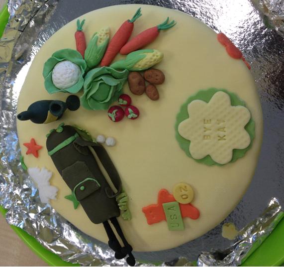 Cake Decoration Ideas Pinterest : Retirement cake neroli s cake decorating Pinterest