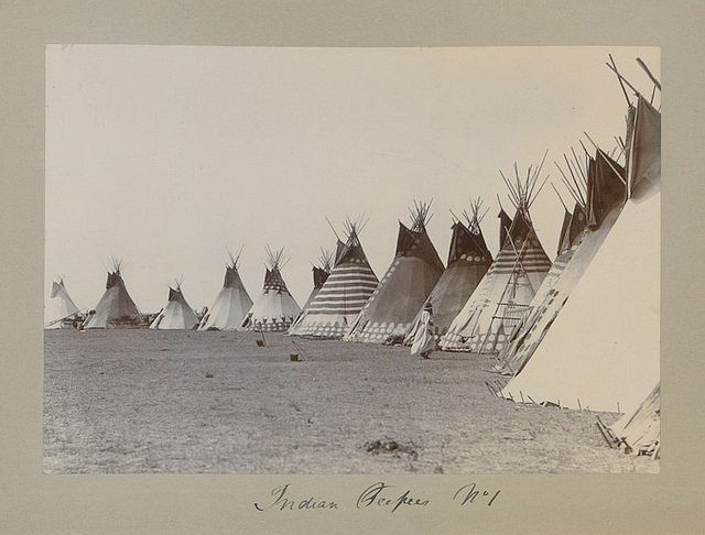 First Nations tipis on the Canadian prairie. These are Blackfoot tipis (Kainai, Siksika or Pikani), date, photographer and location unknown JE.
