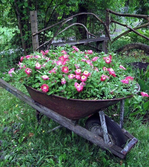 10 Creative Vegetable Garden Ideas: 12 Creative Gardening Ideas