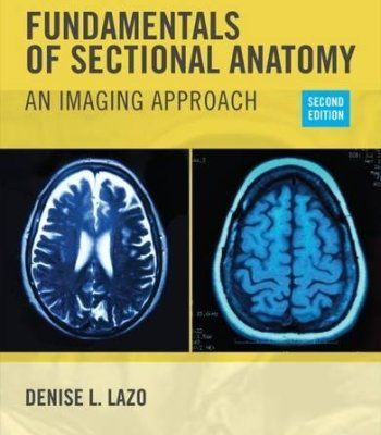 Fundamentals of sectional anatomy pdf anatomy pdf and books fandeluxe Choice Image