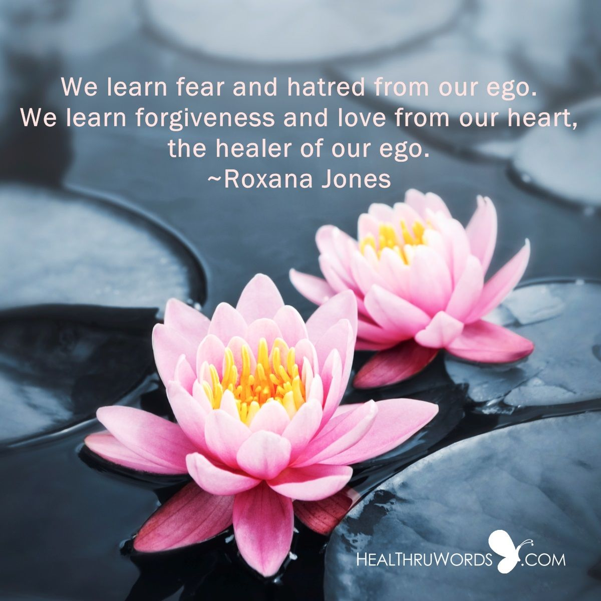 we learn fear and hatred from our ego we learn