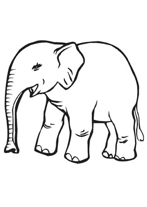 Ausmalbild Kleiner Baby Elefant Zum Ausmalen Ausmalbilder Ausmalbilderelefanten Malvorlagen Ausmalen Schule Kin In 2020 Baby Elefant Ausmalen Elefant