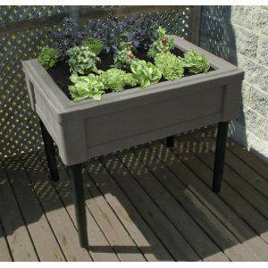 gardening without a backyard