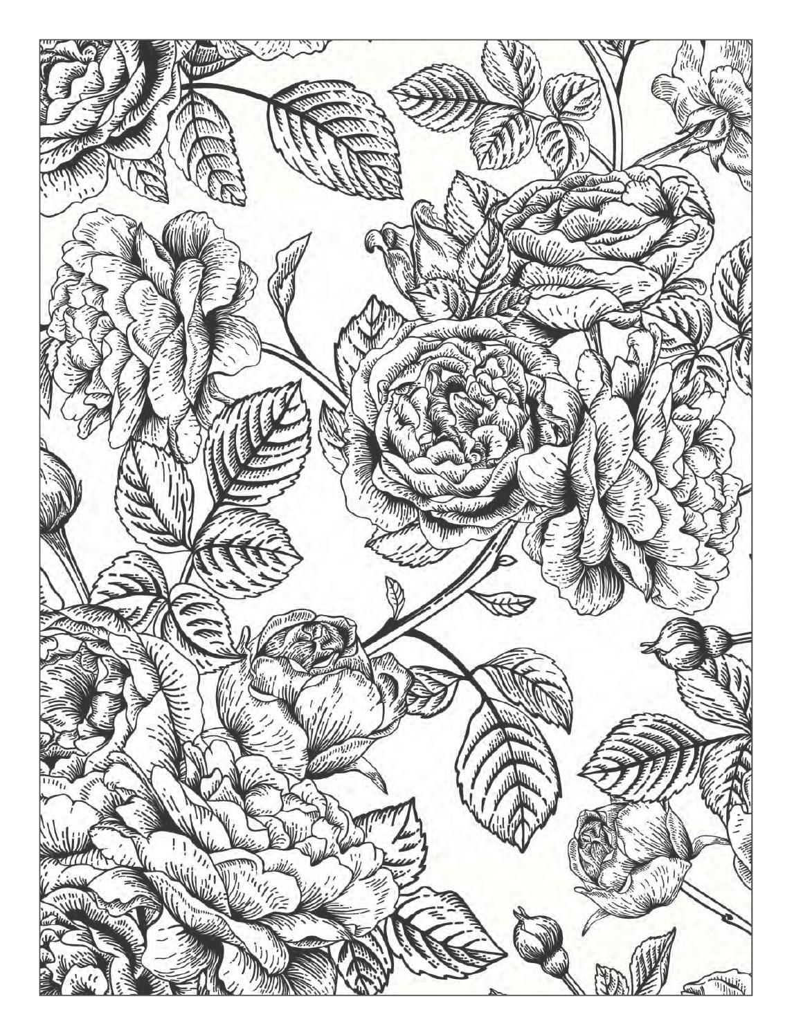 Beautiful Flowers Detailed Floral Designs Coloring Book ...