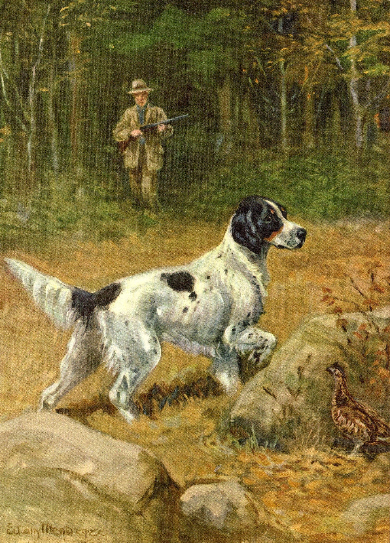 Antique English Setter Dog Print Vintage 1950s Edwin Megargee Etsy In 2021 English Setter Dogs Dog Art Dog Print Art