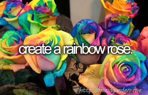 Bucket list bucket-list Before I die - create a rainbow rose