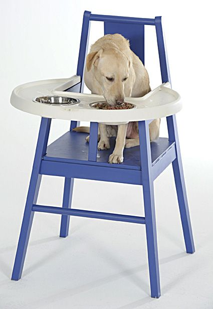 Dog High Chair Wood Living Room Chairs Archives Horticulture Of Christmas Past Animal Humor Dogs Pets Ikea Designs For Pet Tales The Orange County Register