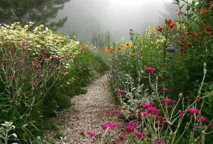 misty flower lined path