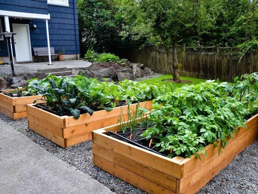 Ten Top Tips For Small Shady Urban Gardens: Tips To Make Urban Garden In Small Area