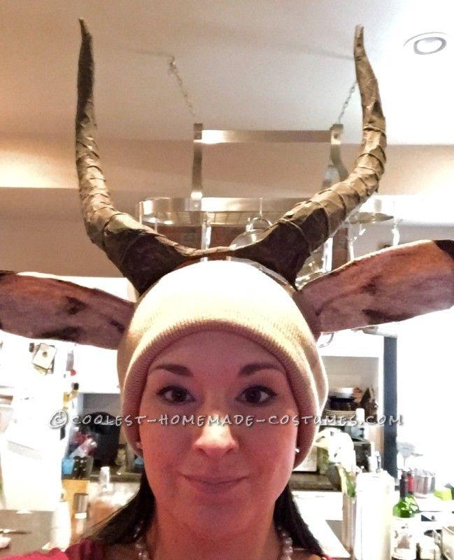 Amazing Taxidermy Animal Heads Funny