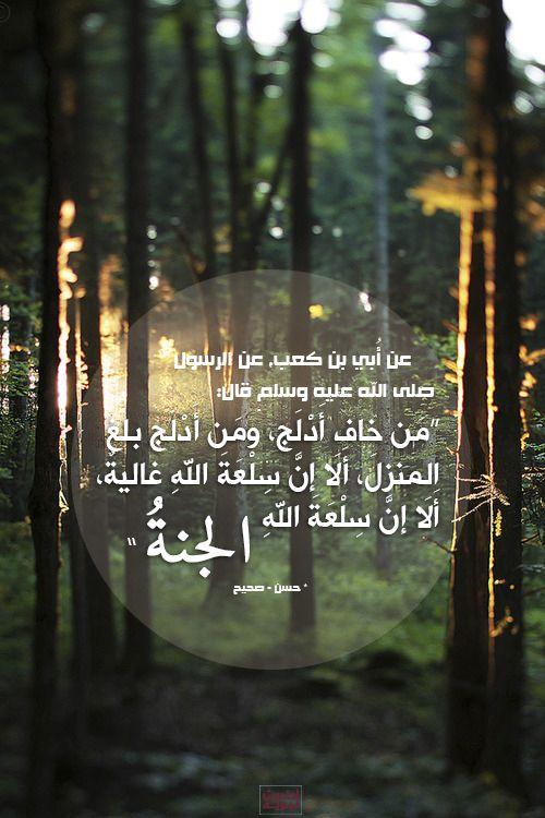 أحاديث نبوية Islamic Quotes Islam Tv Arabic Quotes
