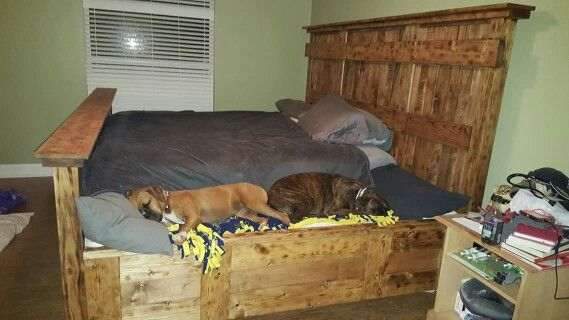 This Is A Great Idea King Bed With 2 Edge Bench For Dogs Custom Bed King Bed Frame Wooden
