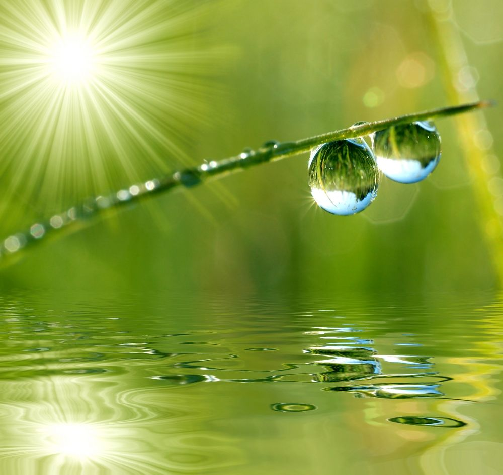 Become a drop of dew in front of the Sun