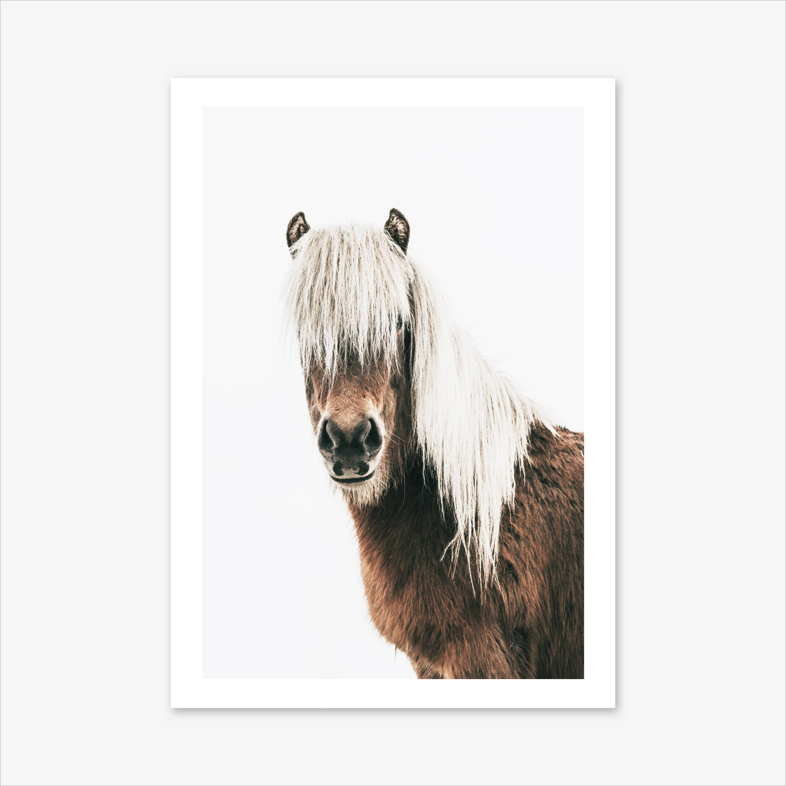 Scandinavian Homeoffice Design: Horse Print, Scandinavian Print, Nature Photography