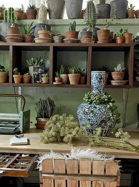 Delightful Green Workshop With Cactus Plants, Plant Pots And Office Desk  #urbanjunglebloggers