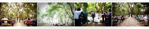 Belofte bos.. SA. Love the trees. http://www.beloftebos.co.za