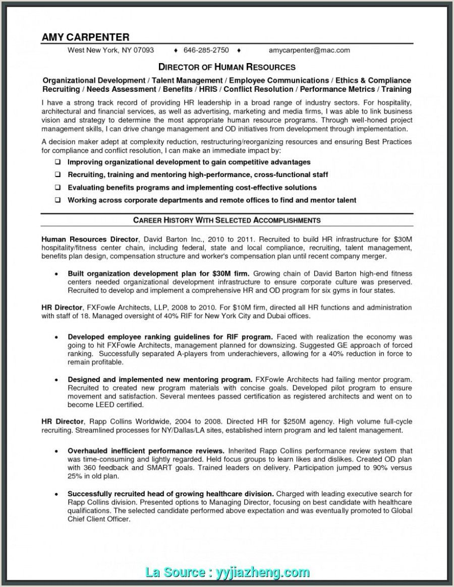 Executive Director Resume Sample Non Profit Resume Writing Services Resume Examples Resume
