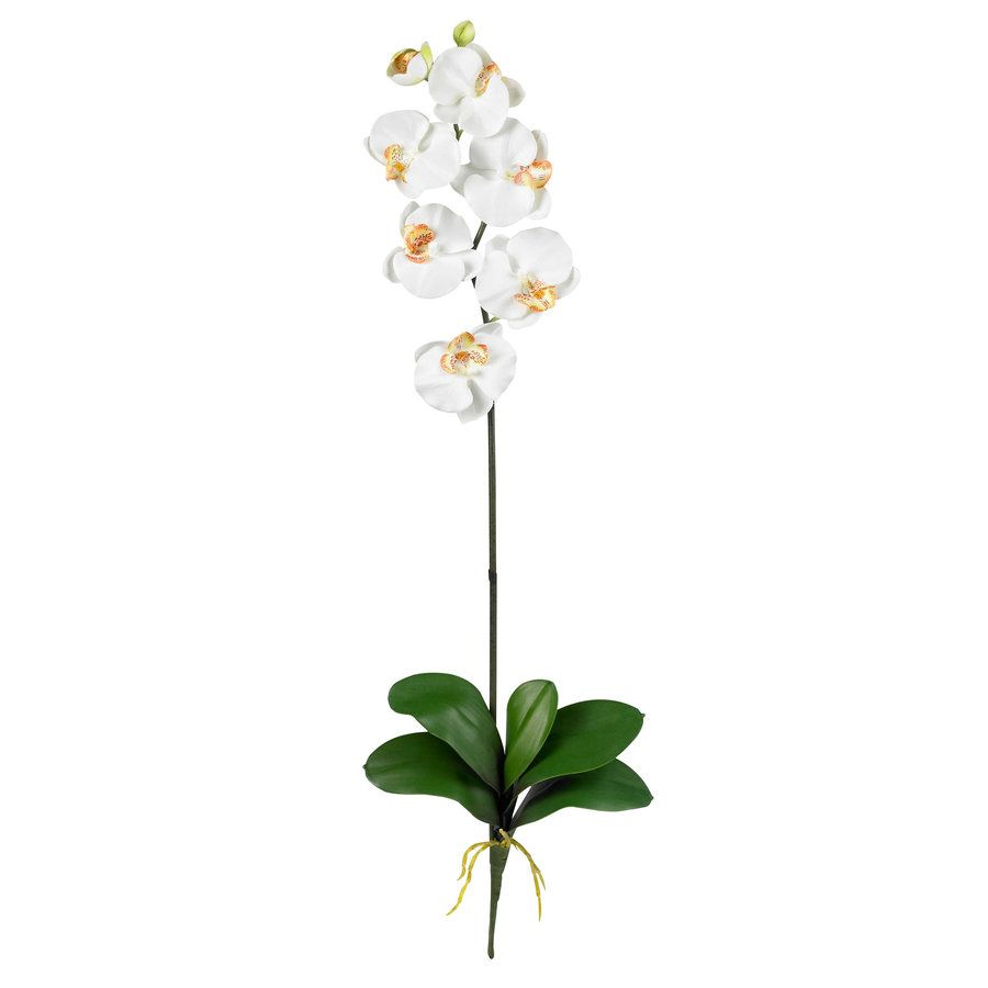 Nearly Natural 31 5 In Cream Artificial Silk Flower Lowes Com In 2020 Silk Orchids Artificial Silk Flowers Phalaenopsis Orchid