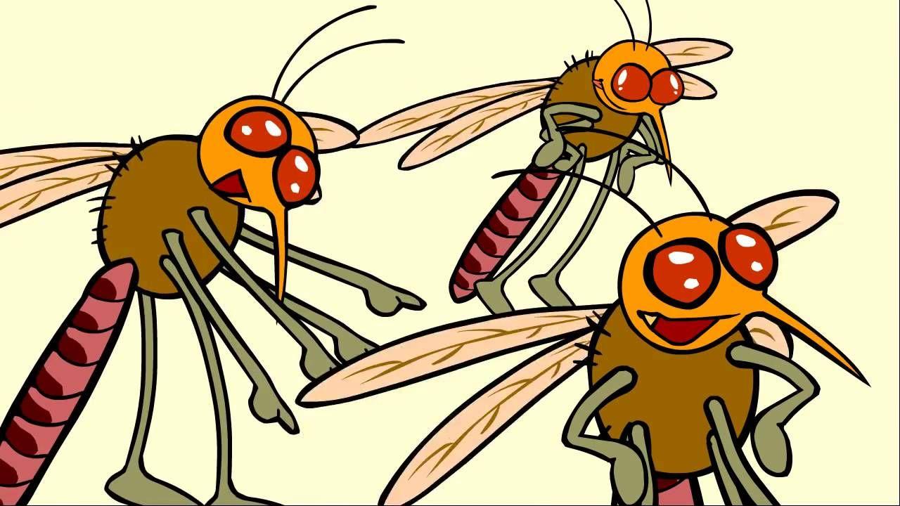 Les moustiques dessin anim ducatif pour enfants livres interactifs - Dessin anime les pingouins ...