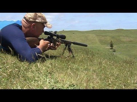 Wild dogs kill native Australian animals & livestock.wmv - YouTube