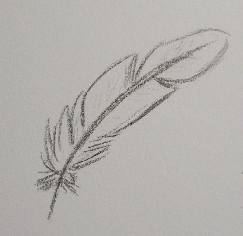 Préférence comment dessiner une plume d oiseau | IIDEES | Pinterest | Comment  ZQ25