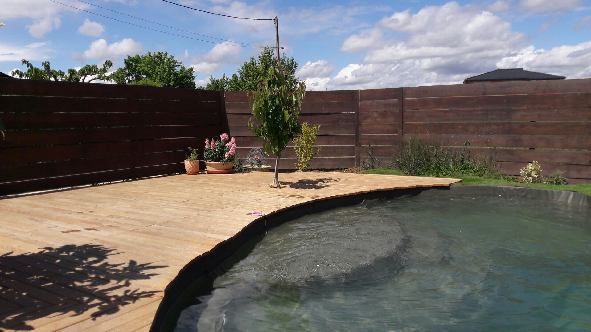 la piscine sur terre daniel liaigre