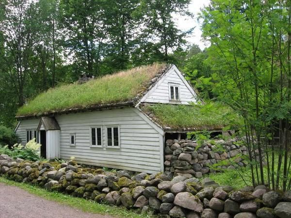Green Roofs Are Built For Environmental Purpose Specifically For Solving The Problem Of Conventional Roofs Green Roof System Green Roof Installation Green Roof