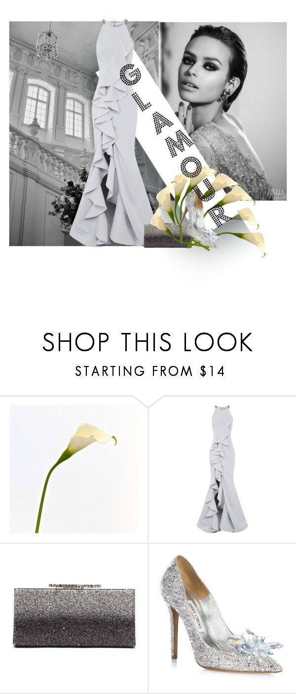 """""""Untitled #344"""" by gio-turchese ❤ liked on Polyvore featuring Rachel Gilbert and Jimmy Choo"""