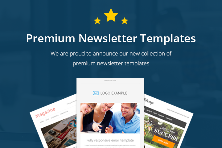 eCommerce Newsletter Email Layout email marketing Email Software ...