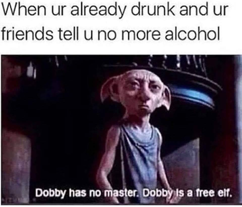 Best 21 Harry Potter Memes Dobby Love You Meme Funny Pictures Comment Memes