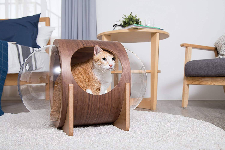 Modern Round Cat Wall Shelf With Porthole