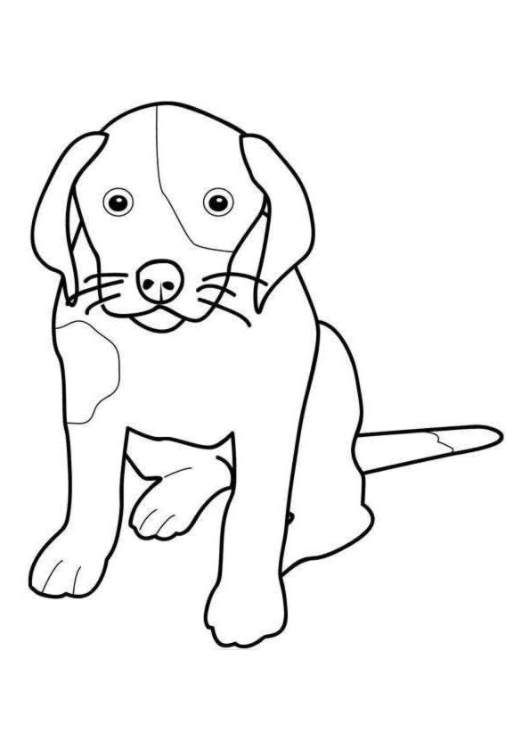 kleurplaten hond kleurplaat