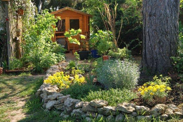 Trockenmauer mit Bergsteinkraut und Currystrauch Filz und Garten