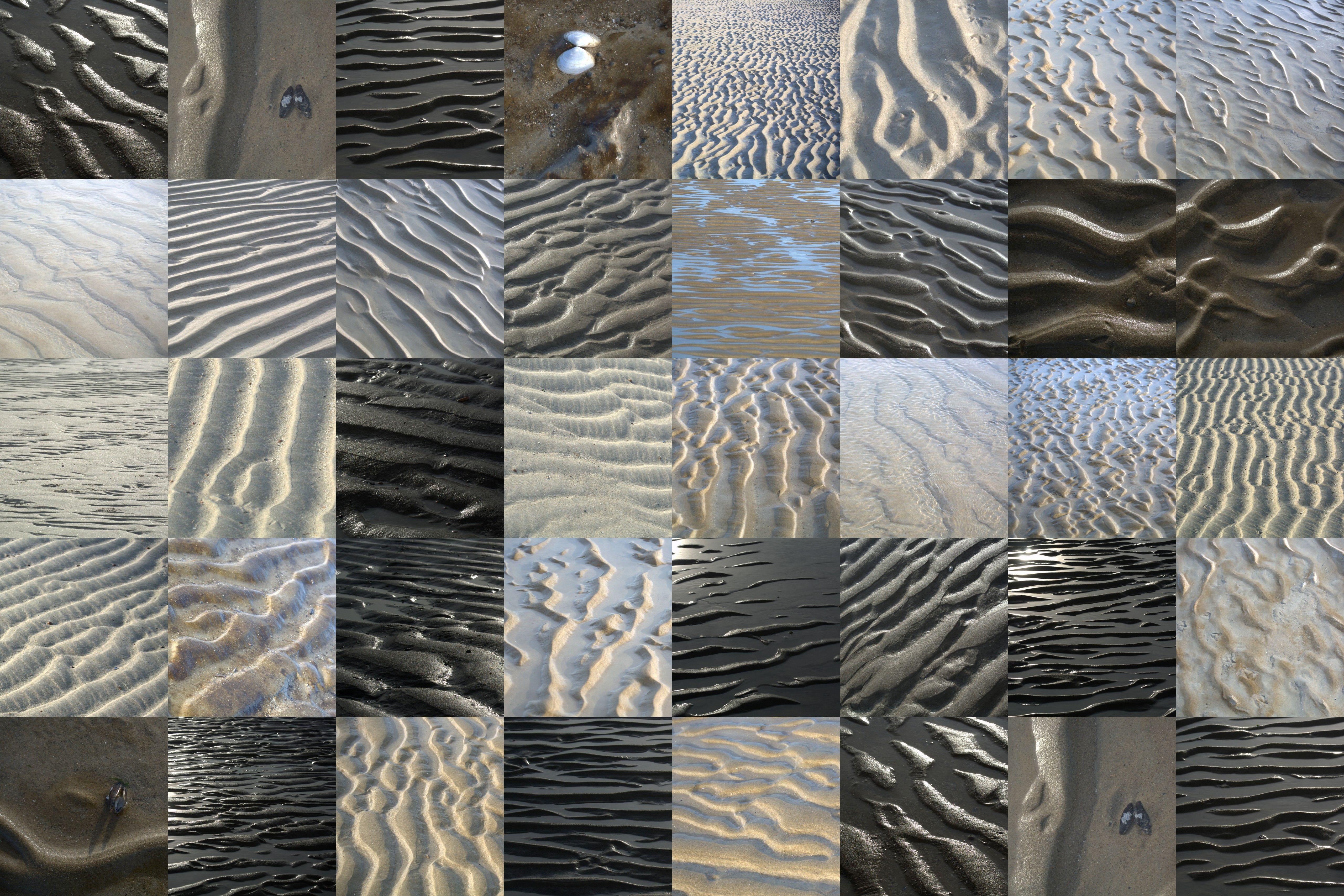 Zandfoto's bij Zwarte Polder