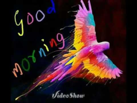 Good Morning Videos Funny Good Morning Whatsapp Video Message For Friends Hindi Youtube Good Morning Funny Good Morning Song Good Morning Gif
