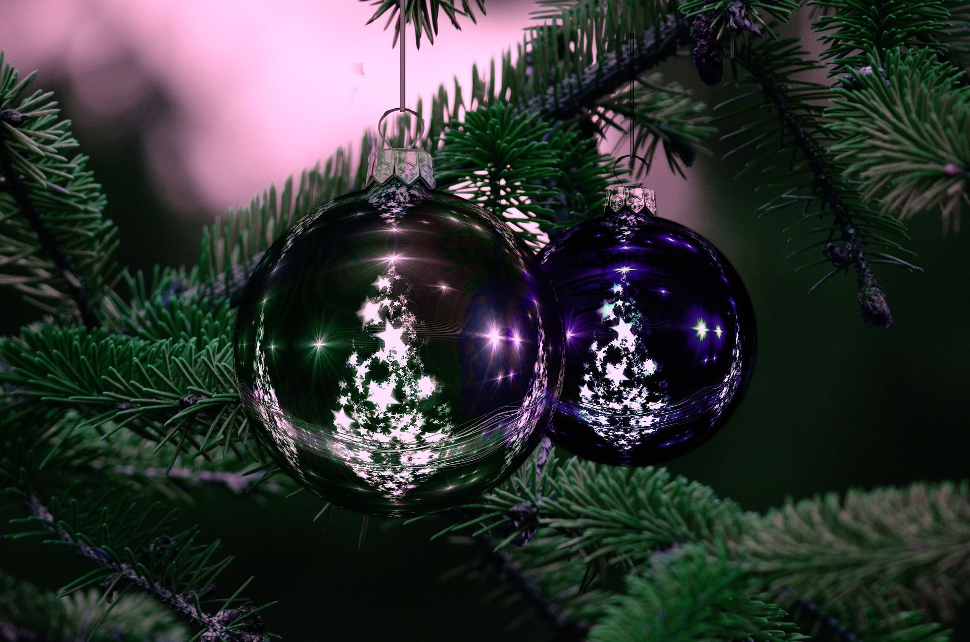 when does the christmas tree go up in your house - When Does The Christmas Tree Go Up