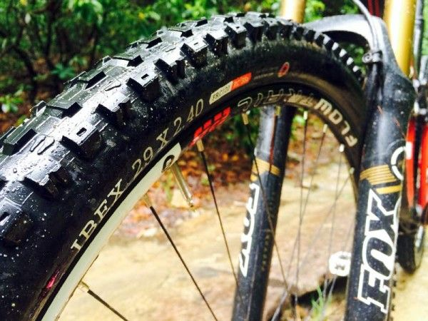 One Ride Review Onza Ibex Lynx Mountain Bike Tires With Images