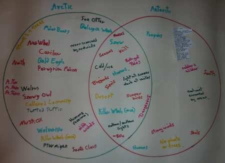 Polar Exloration Arctic And Antarctic For Kids Pinterest Venn