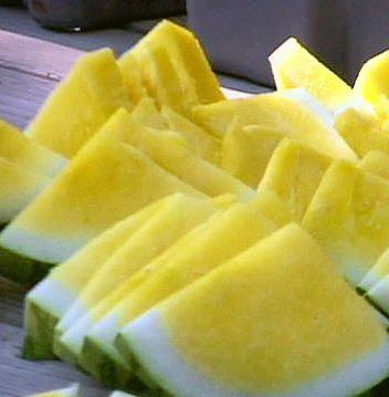 بالصور فاكهه البطيخ الاصفر Yellow Watermelon عالم الصور Square Watermelon Watermelon Watermelon Seeds
