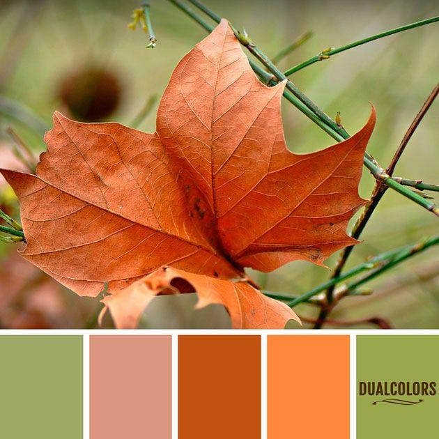Color Paleta 248 Color En Paleta 248...