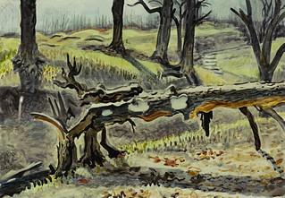 Fallen Tree In Woods 1943 45 In 2021 Autumn Trees Artwork Painting