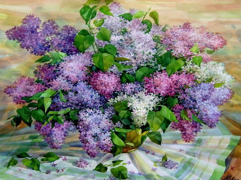 (55) Одноклассники | Посадка деревьев, Красивые цветы, Сирень