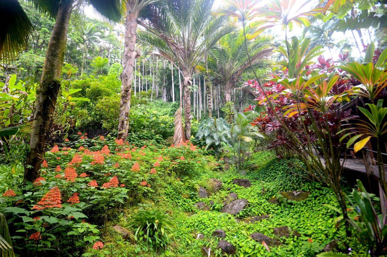 f4c857d977b90addd32f1bb943db73de - How Big Is The Botanical Gardens