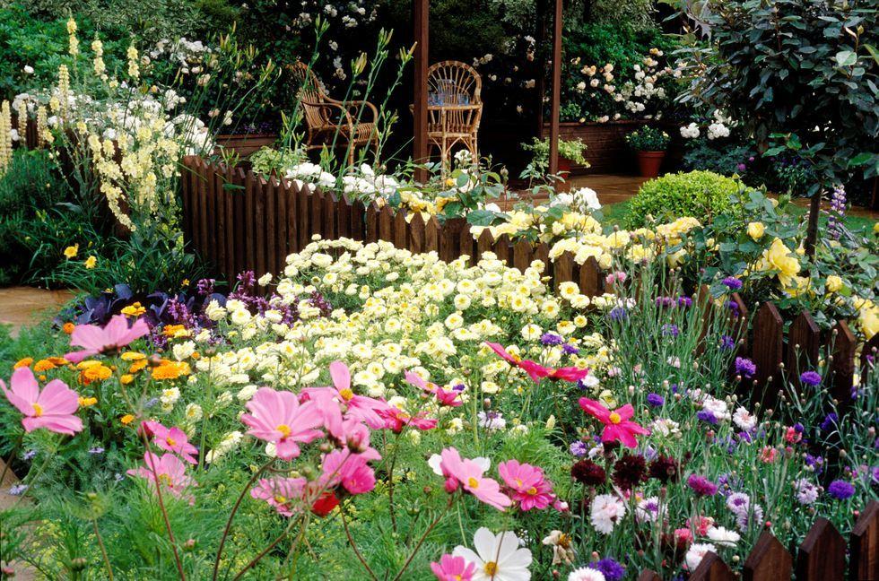 7 tips for gardening success   Garden express, Gardens and Plants