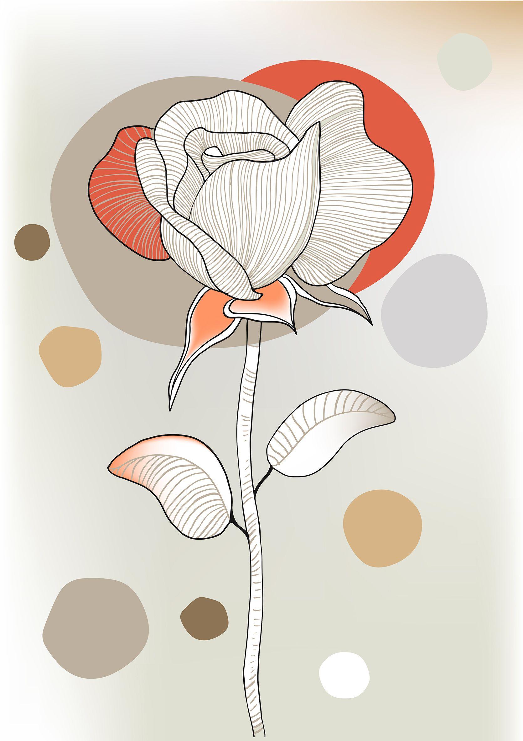 Rose 1 Poster Geschenk Kunst Grafik Extravagant Wandschmuck Wohndesign Schoner Wohnen Dekoration Wohnart Trendfarben Poster Design