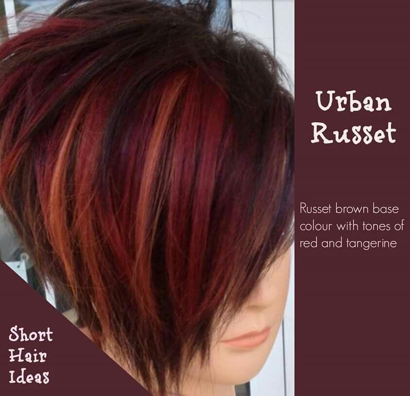 Urban Russet Hair Short Red Hair Short Hair Color Hair Styles