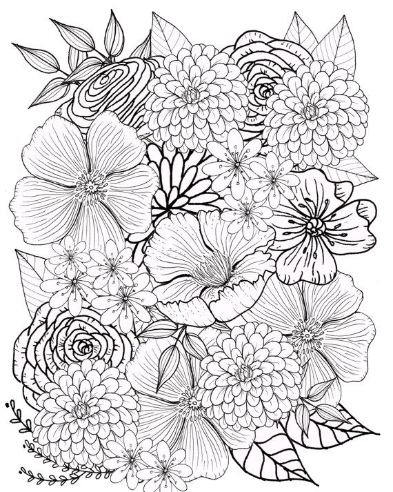 Flower Coloring Page, Floral Coloring Page, Adult Coloring Page ...