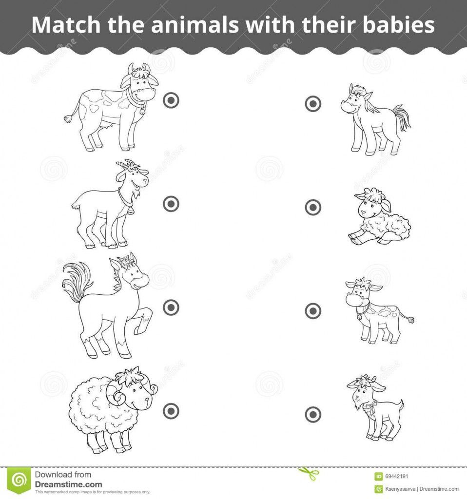 Animals And Their Babies Worksheets For Kindergarten Pdf Kidz
