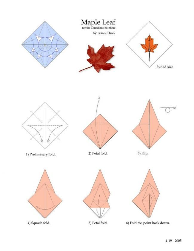 Maple Leaf Origami Tutorial A Lot Of Steps Looks Hard